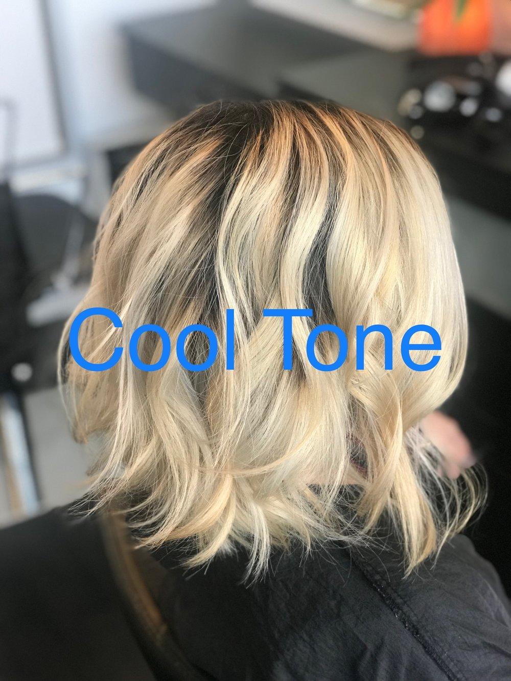 Cool tone hair 2