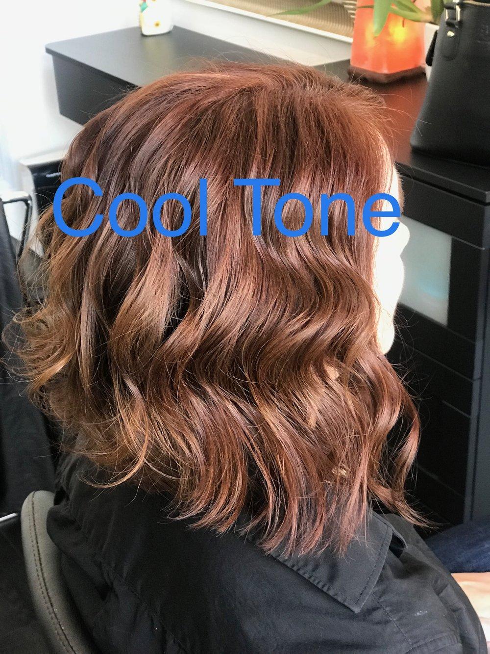 Cool tone hair 3