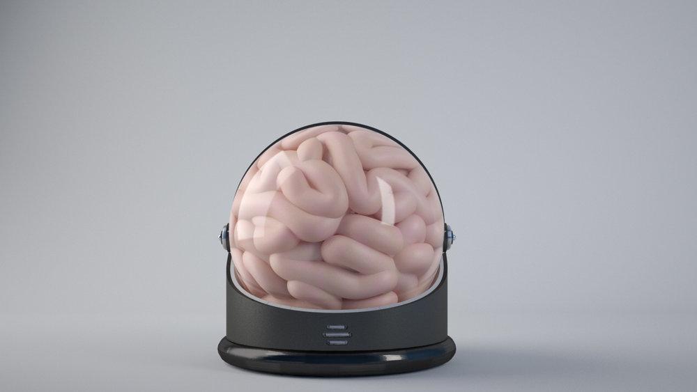 brain_4.jpg