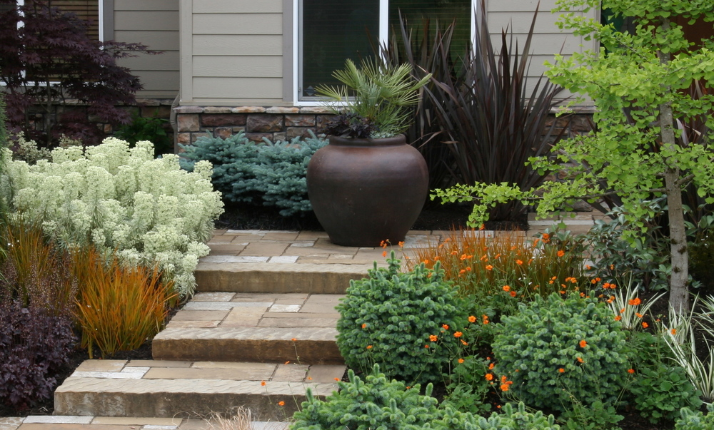 The tan hues of Frontier Sandstone add warmth to this suburban entry garden.  The availability of matching stair treads is one of the stone's many advantages.