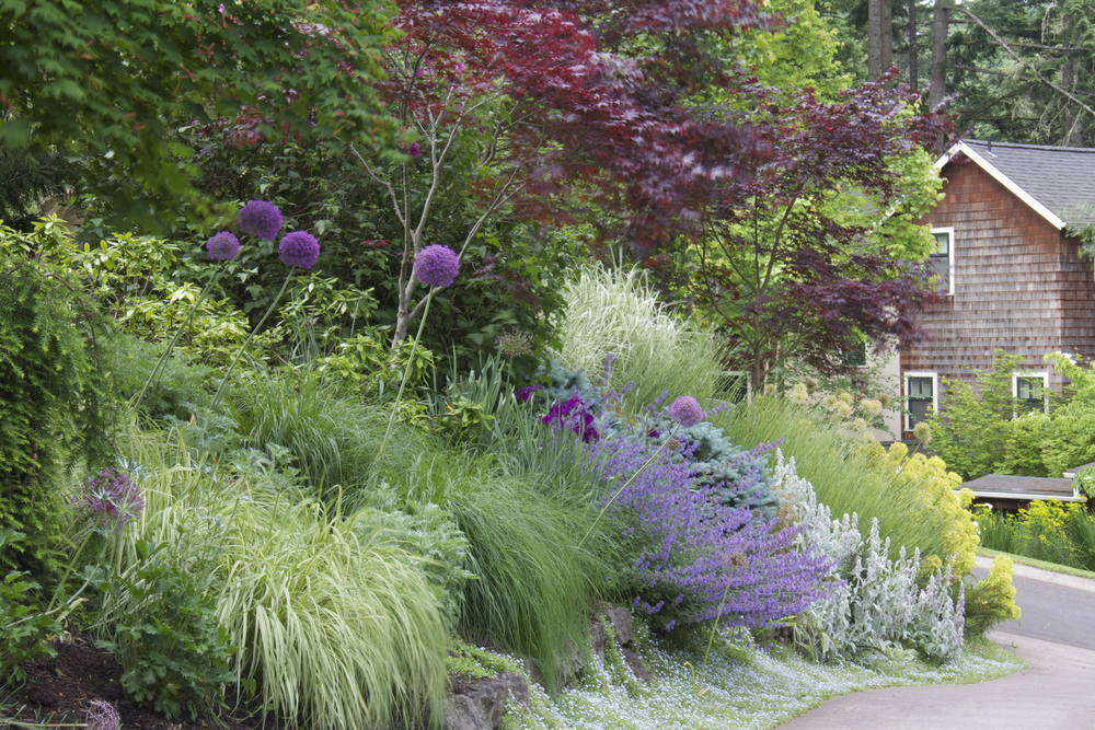 We selected low-maintenance plants with great foliage as a foundation on this slope, saving the labor-intensive high impact flowers for areas easily reached from an edge. Learn more tips for making a beautiful hillside garden in our new blog post.
