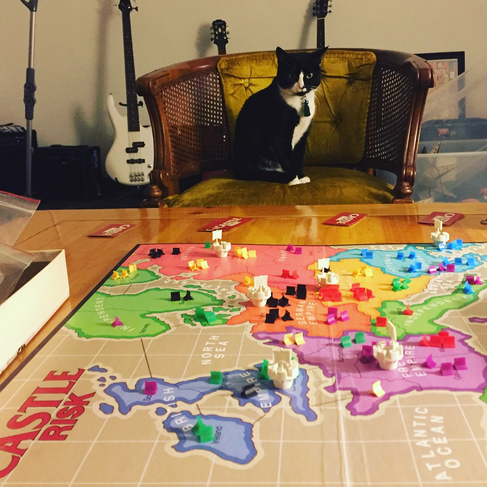 It looks like a normal game of Castle Risk, but Pancake is really plotting to take over the world.