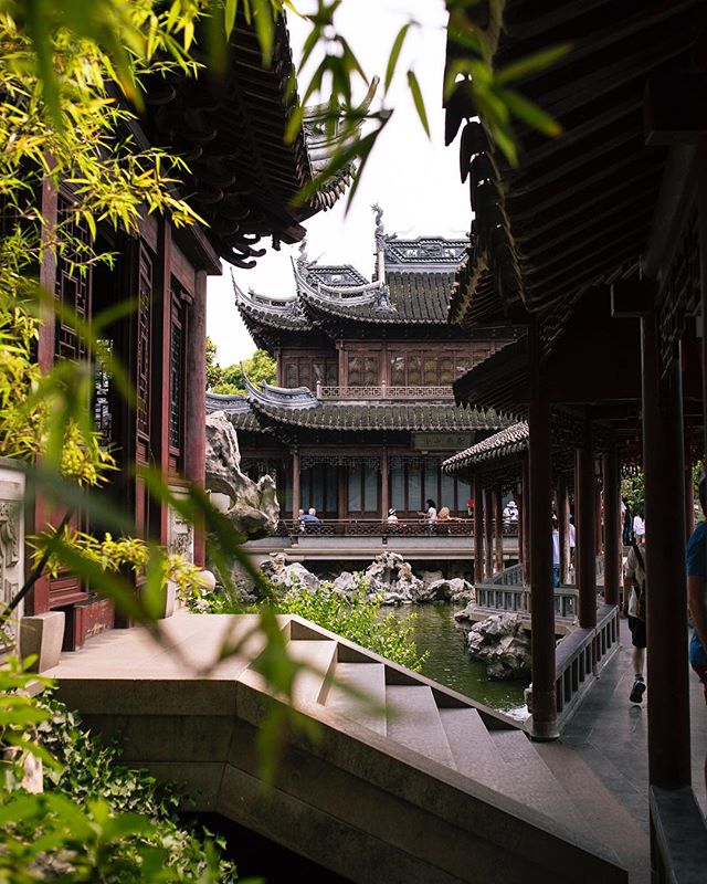 Taking a break from the city - - - #shanghai #shanghailife_ #上海 #explorechina #shanghaiist #garden #architecture #urbex #urbanexploration #instamagazine_ #chasinglight #streetmagazine #justgoshoot #illgrammers #artofvisuals  #streetdreamsmag #thecreatorclass #agameoftones #exploretocreate #beautifuldestinations #createexplore #createexploretakeover #stayandwander #visualsoflife #visualsgang #mytinyatlas #welltravelled #globetrotter #vsco #vscocam