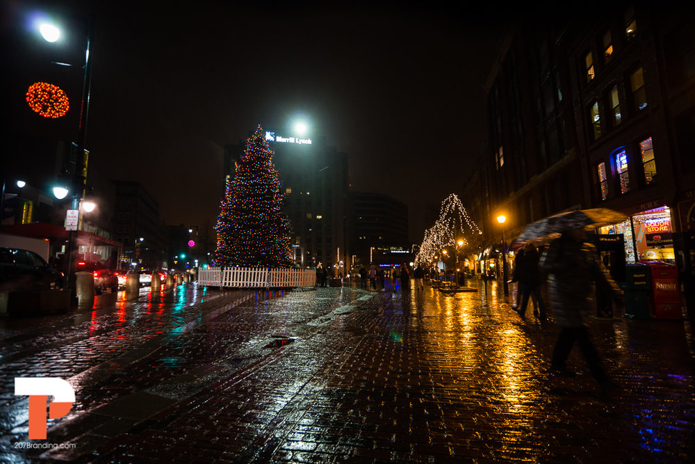 christmas-tree-2016-portland-maine-08.jpg
