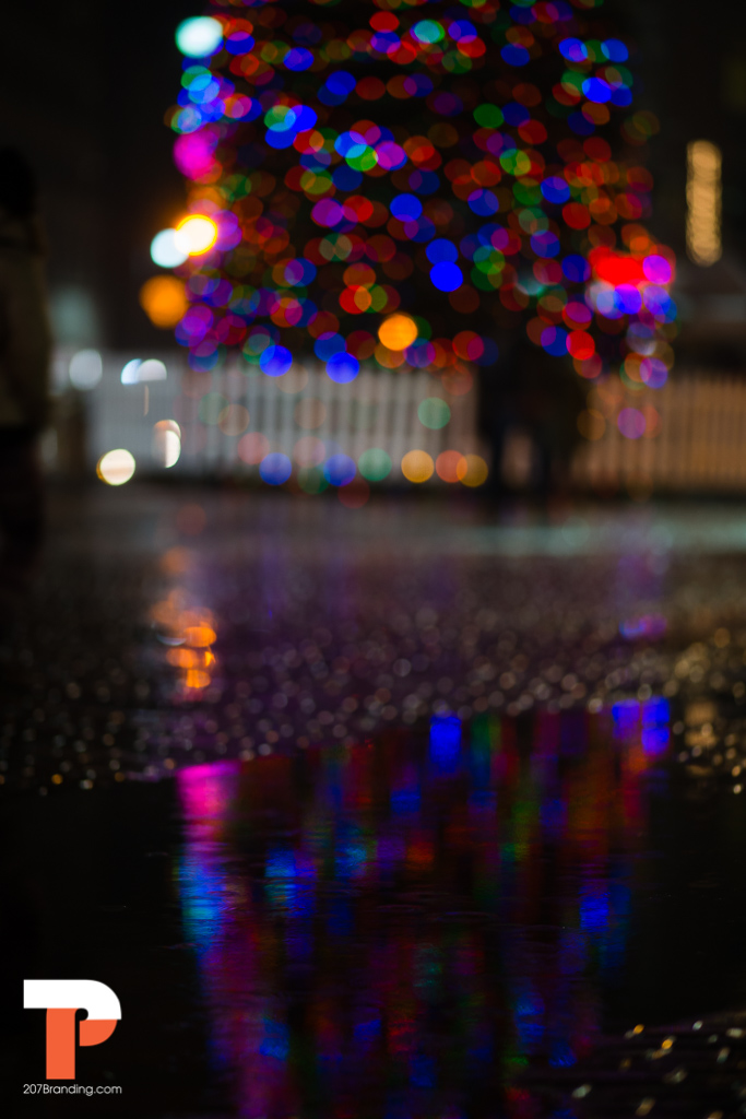 christmas tree lighting rain or shine headshot photographer