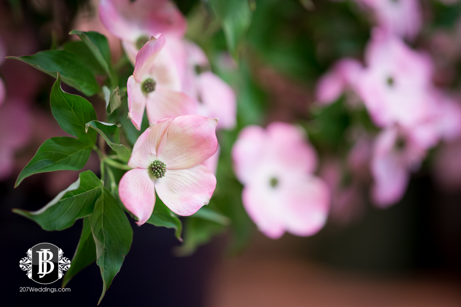 jardiniere-florist-maine-wedding-photographers-7.jpg