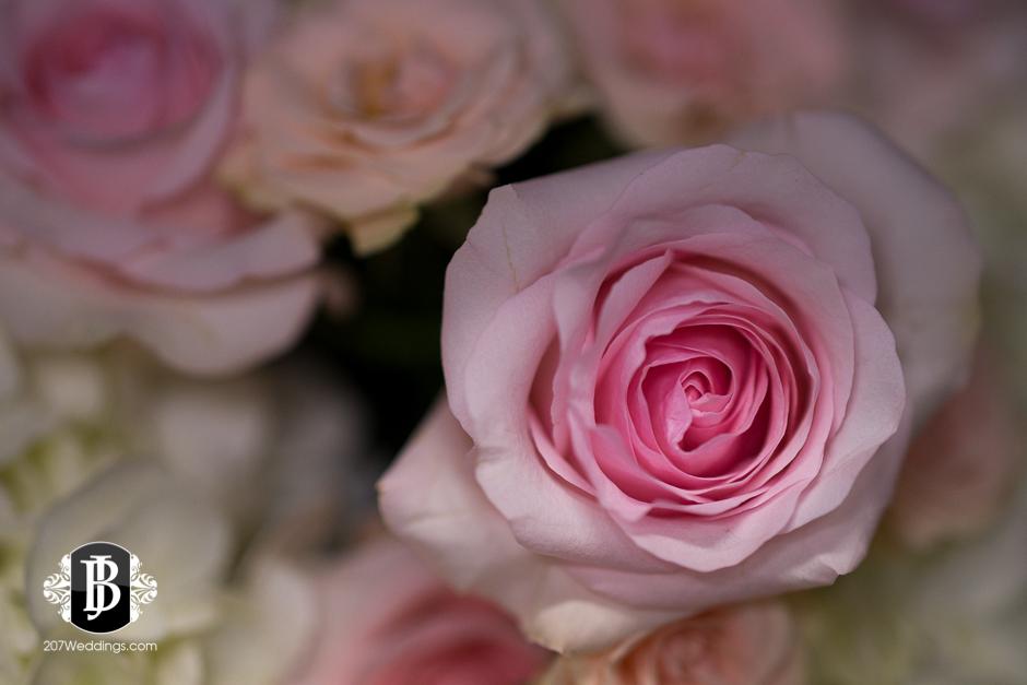 jardiniere-florist-maine-wedding-photographers-16.jpg