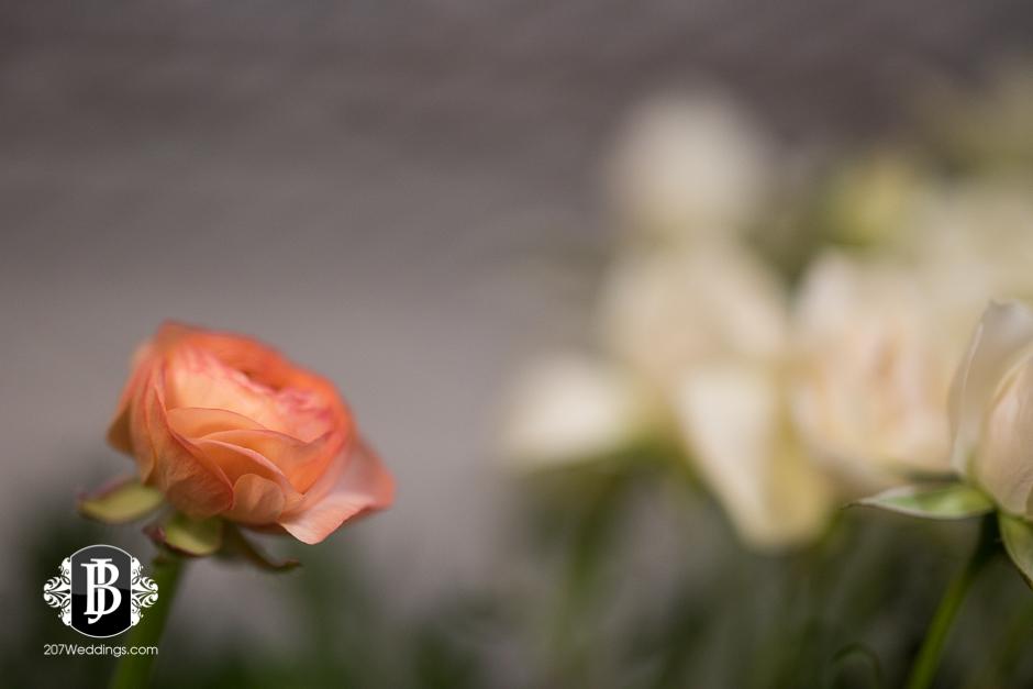 jardiniere-florist-maine-wedding-photographers-18.jpg