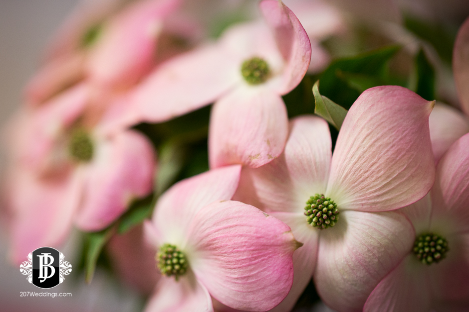 jardiniere-florist-maine-wedding-photographers-22.jpg