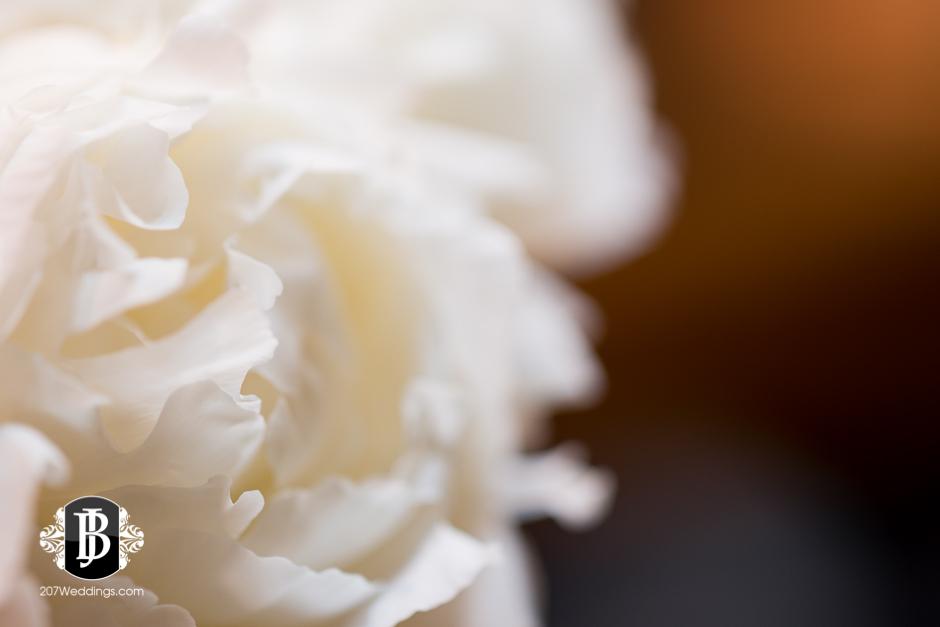 jardiniere-florist-maine-wedding-photographers-24.jpg