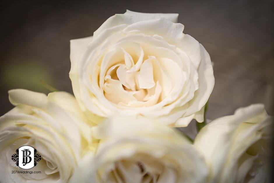 jardiniere-florist-maine-wedding-photographers-23.jpg