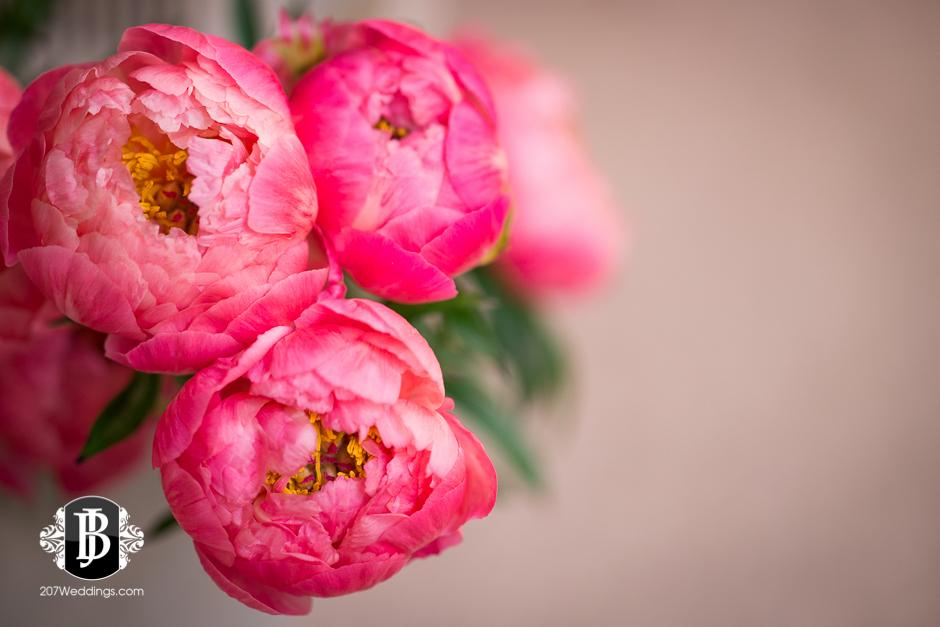 jardiniere-florist-maine-wedding-photographers-26.jpg