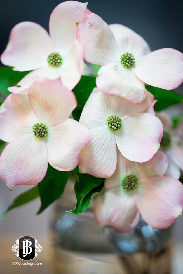 jardiniere-florist-maine-wedding-photographers-36.jpg