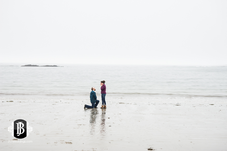 wedding-photographers-in-portland-maine-chris-becky-proposal-photoshoot-3.jpg
