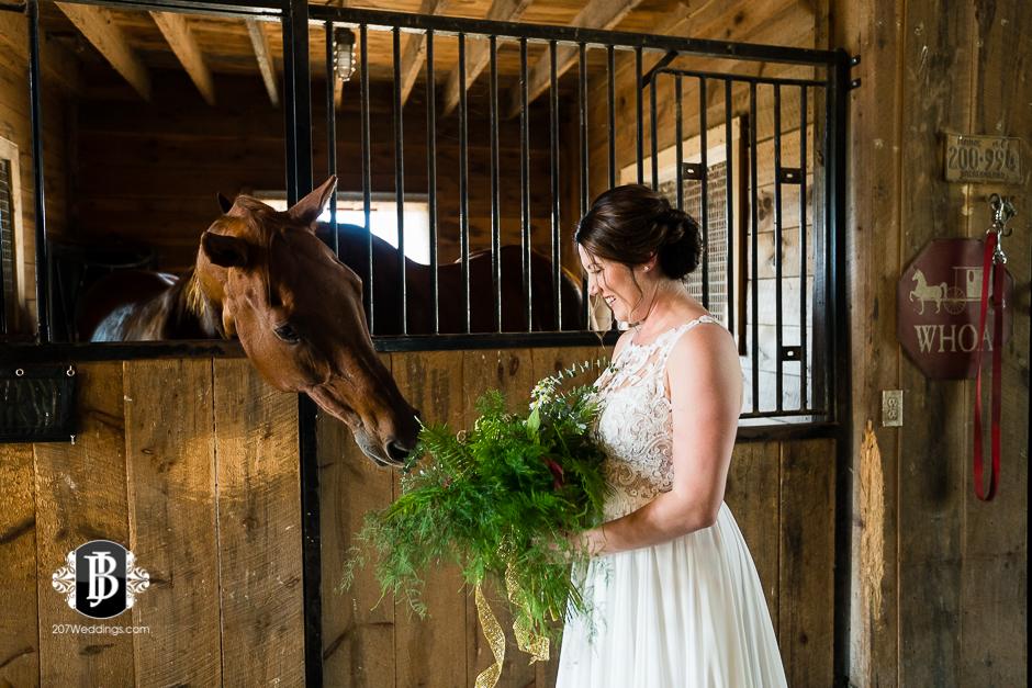 wedding-photographers-near-saco-maine-river-winds-farm-4.jpg