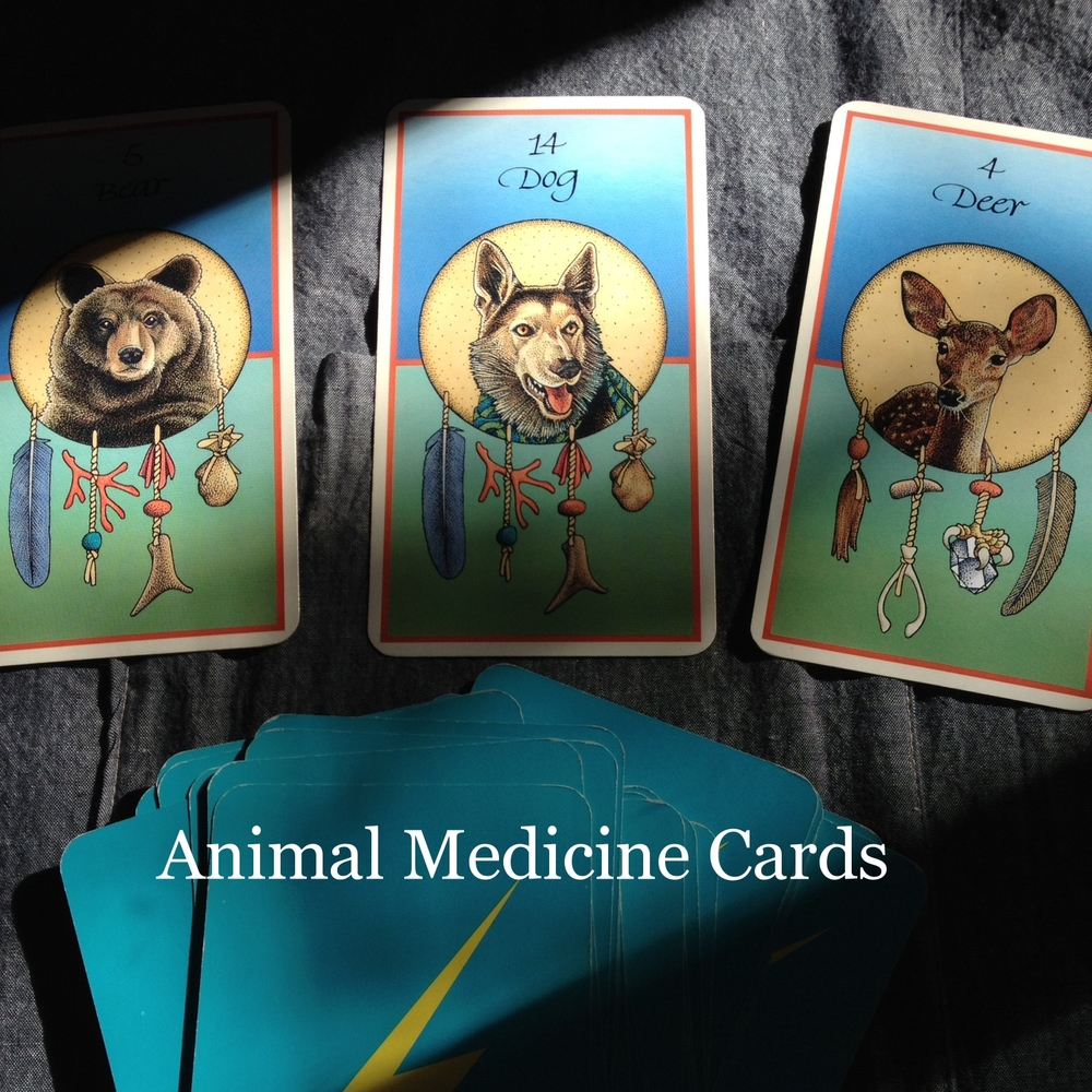 animalmedicinecards