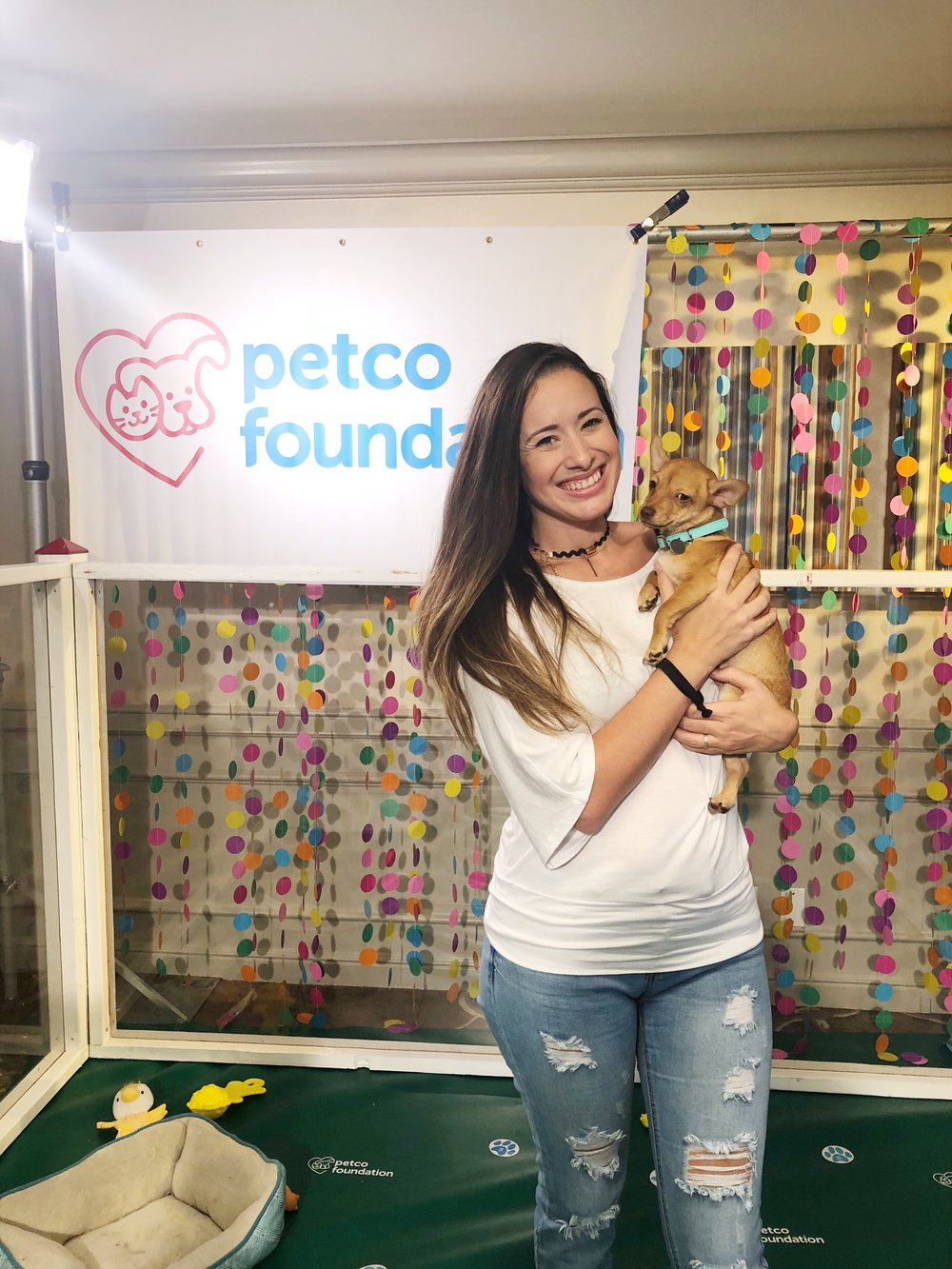 Petco Foundation can help you find your furry friend!