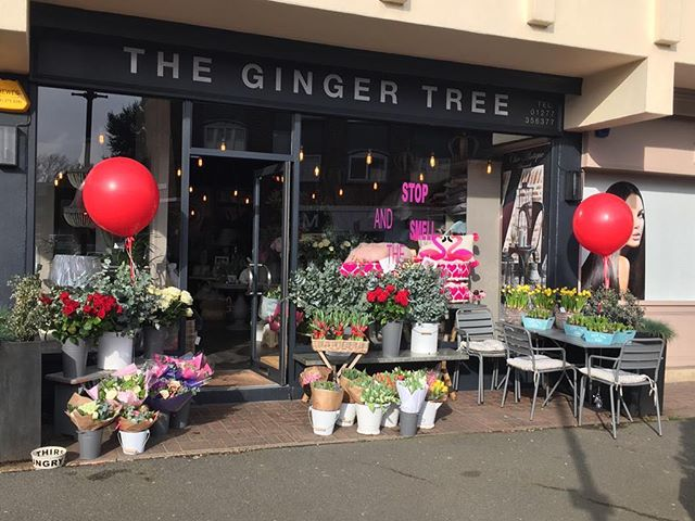 ❤️Our balloons are looking great at @thegingertreeingatestone ❤️#love #valentines #balloons #romantic #ingatestone