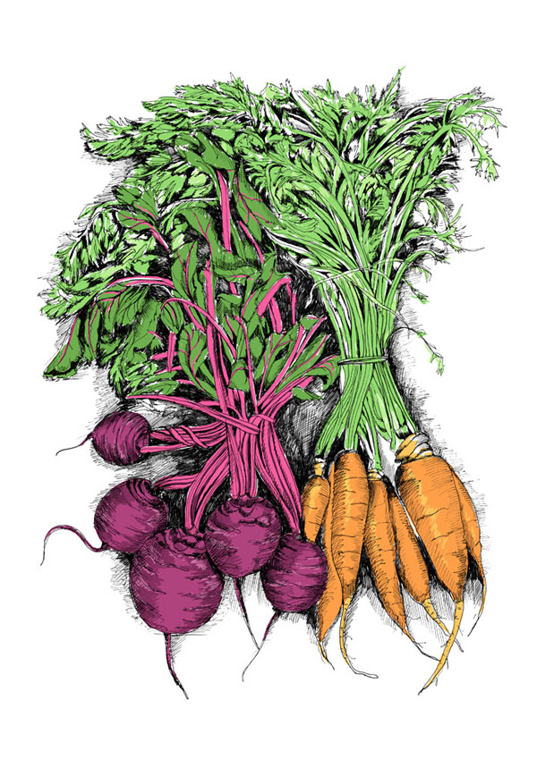 May_van_Milingen-beetroot-and-carrots.jpg