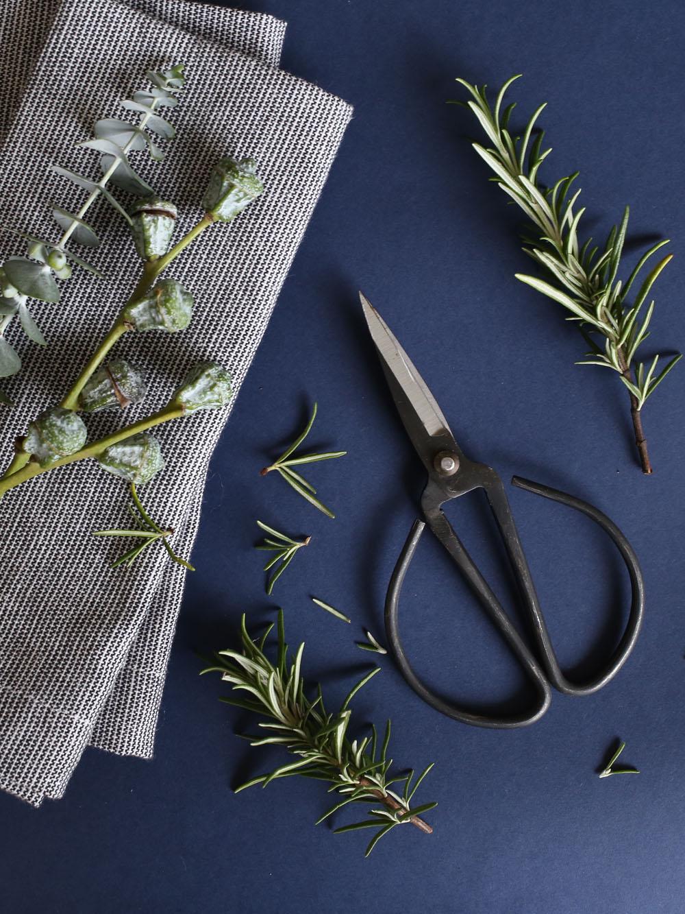 Rosemary and eucalyptus | Design Hunter