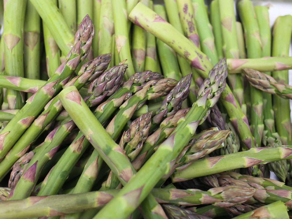 Asparagus tips | Design Hunter