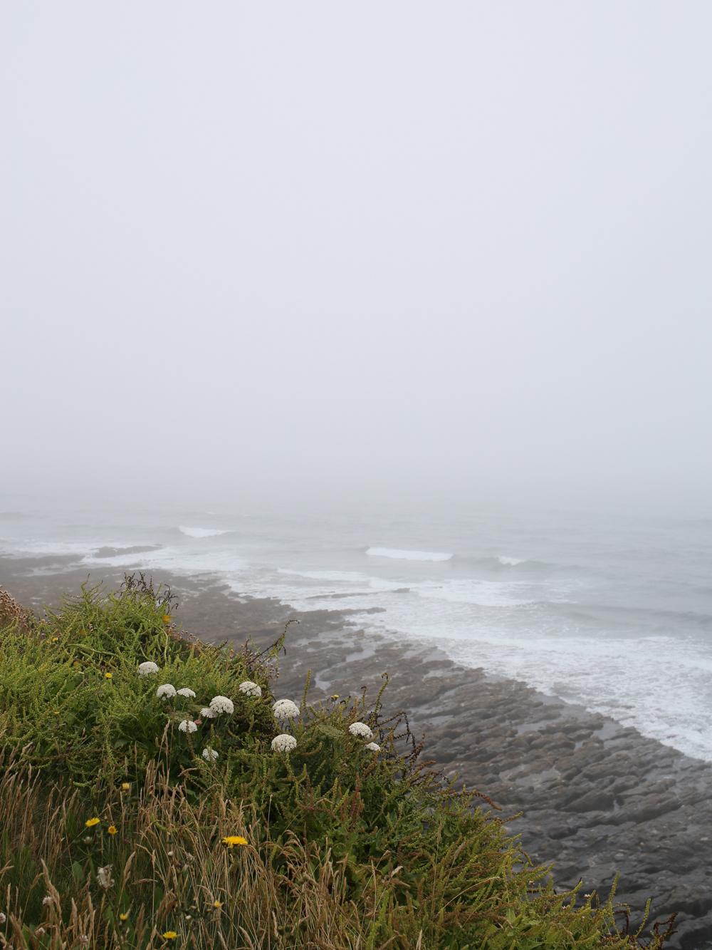 Cornish coastal path at Portleven | Design Hunter
