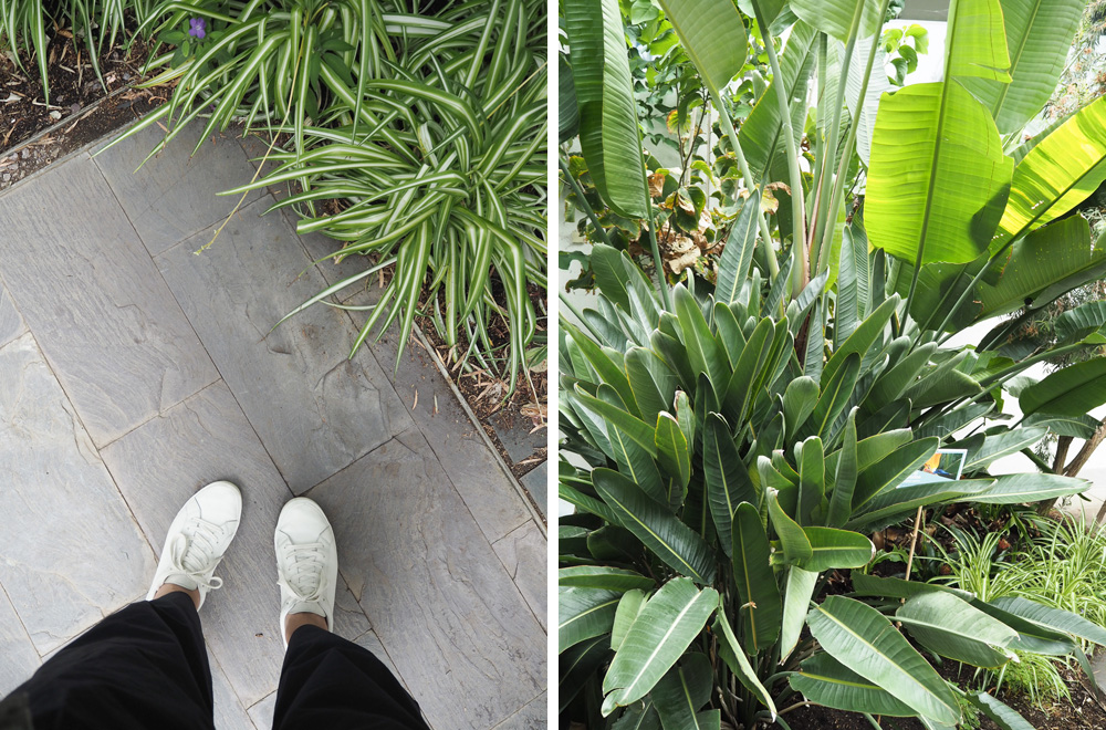 Botanical gardens | Design Hunter