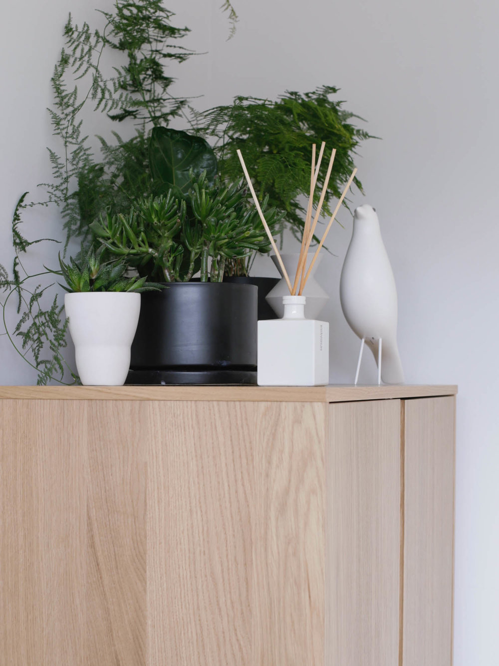 Houseplants and white Vitra house bird