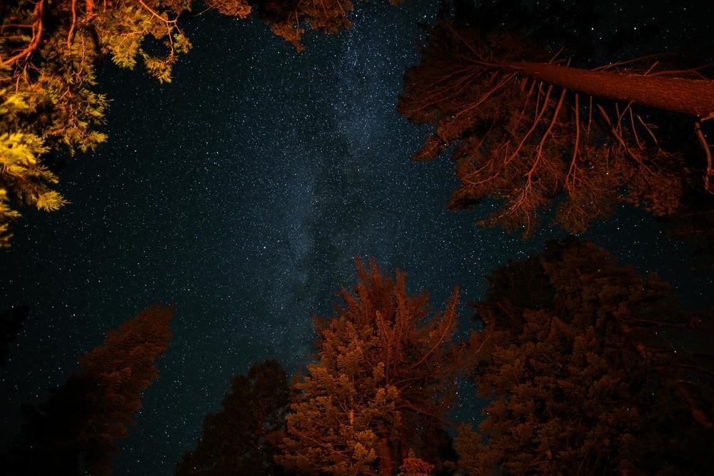 Yosemite Always Forever-26.jpg