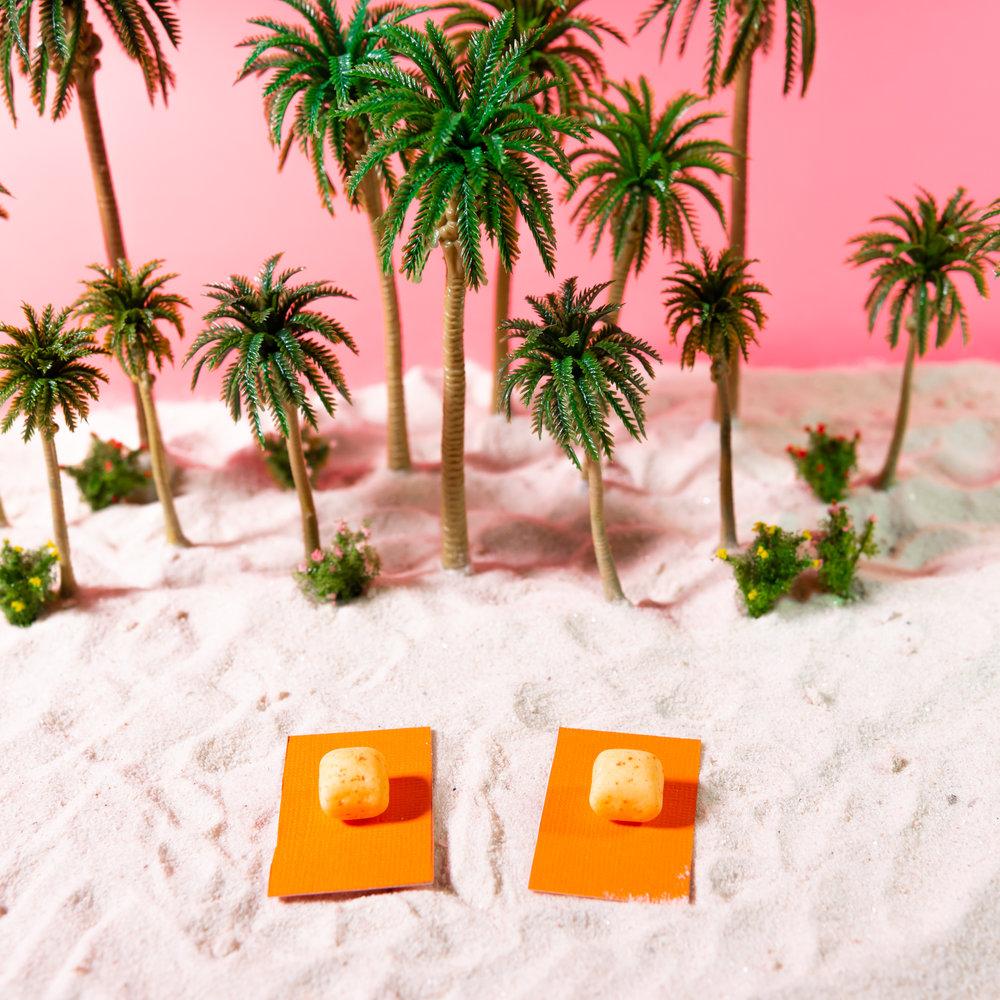 TropicalPhoto-2.jpg