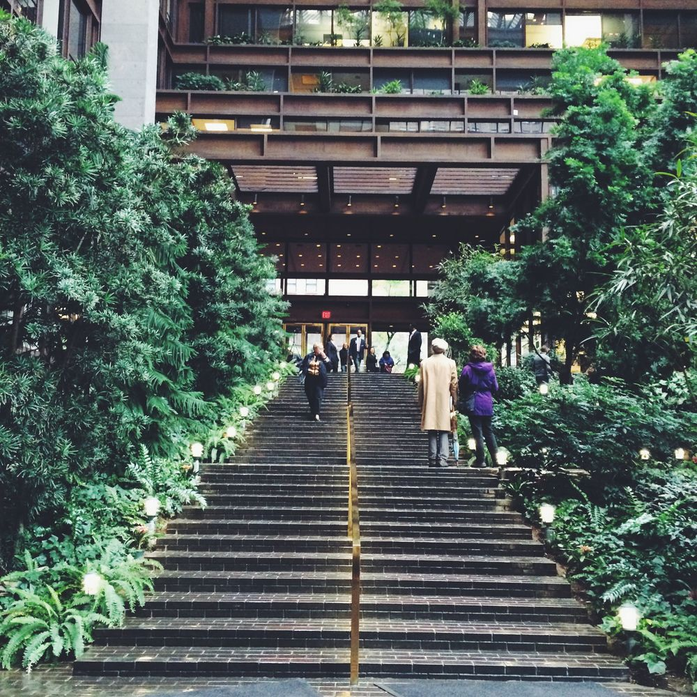 October 11, 2014 Varied levels of the indoor courtyard hidden amidst thick foliage