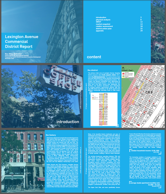 Downtown Economic Development: Lexington Avenue Commercial District Report