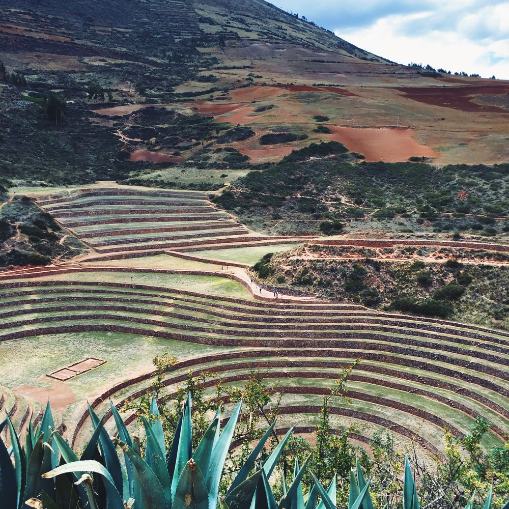 The terraces of Moray