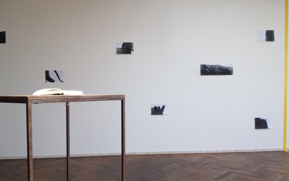 Installatieshot in &Collaborate, Felix &Foam © Beelddragers, 2014