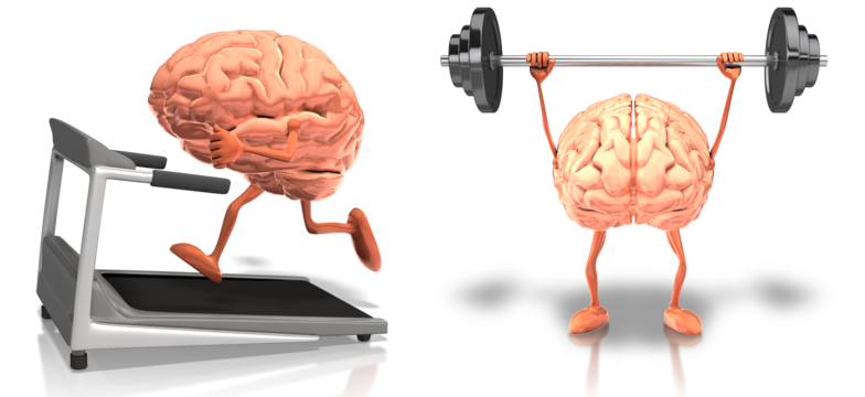 brain-treadmill-barbell-gym.png