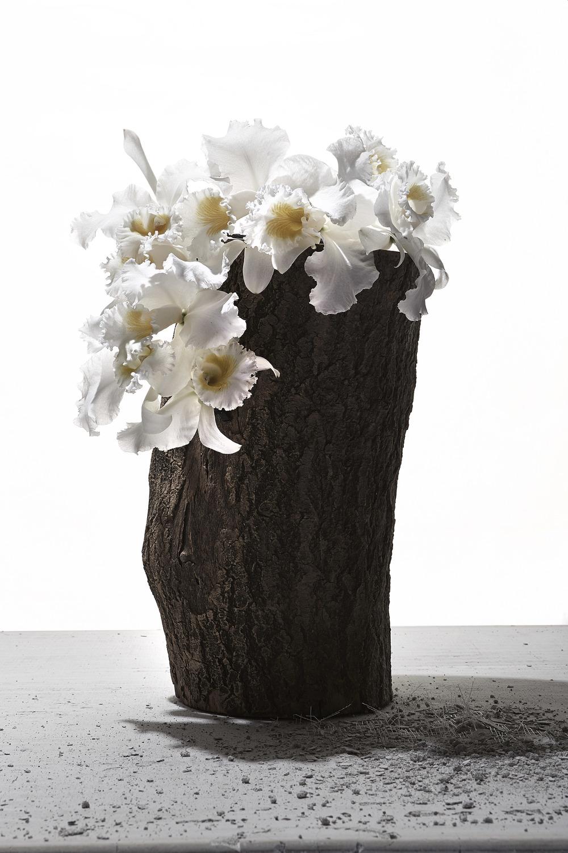 Log Vase_Flower.jpg