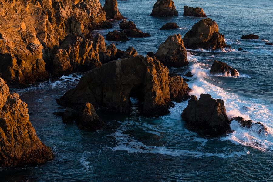 Bodega Head,Sonoma County