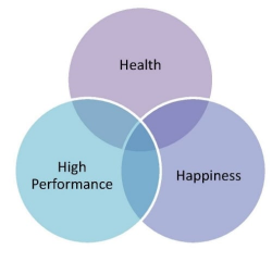 The 3 pillars, inextricably linked are  highly powerful when considered                 together.
