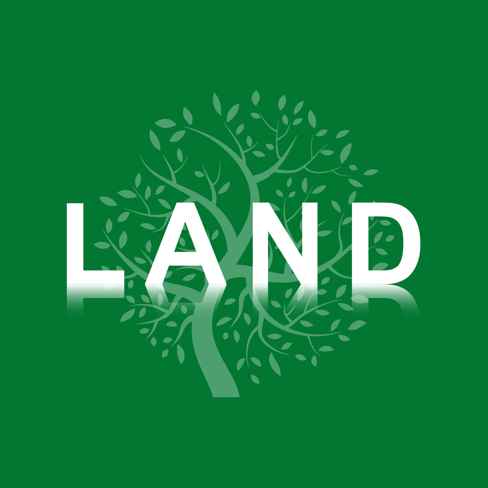 What is Land?  Registered & Unregistered Land  Proprietary Estoppel  Easements  Freehold Covenants  Mortgages  Leases  Leasehold Covenants  Leasehold Remedies  Co-ownership