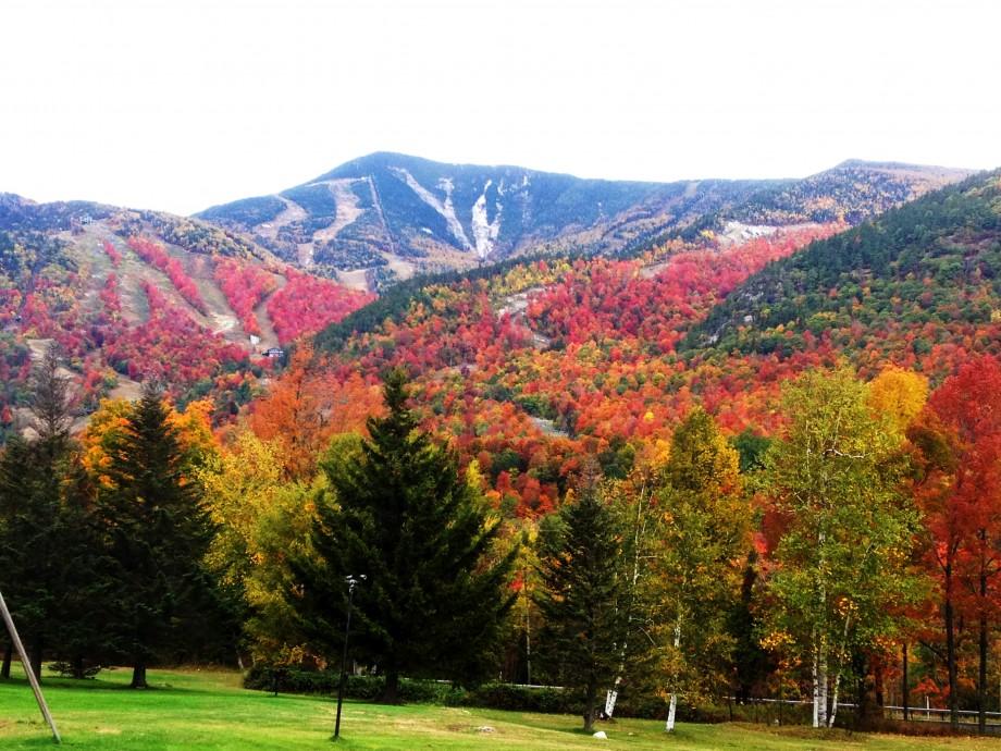 image via LakePlacid.com
