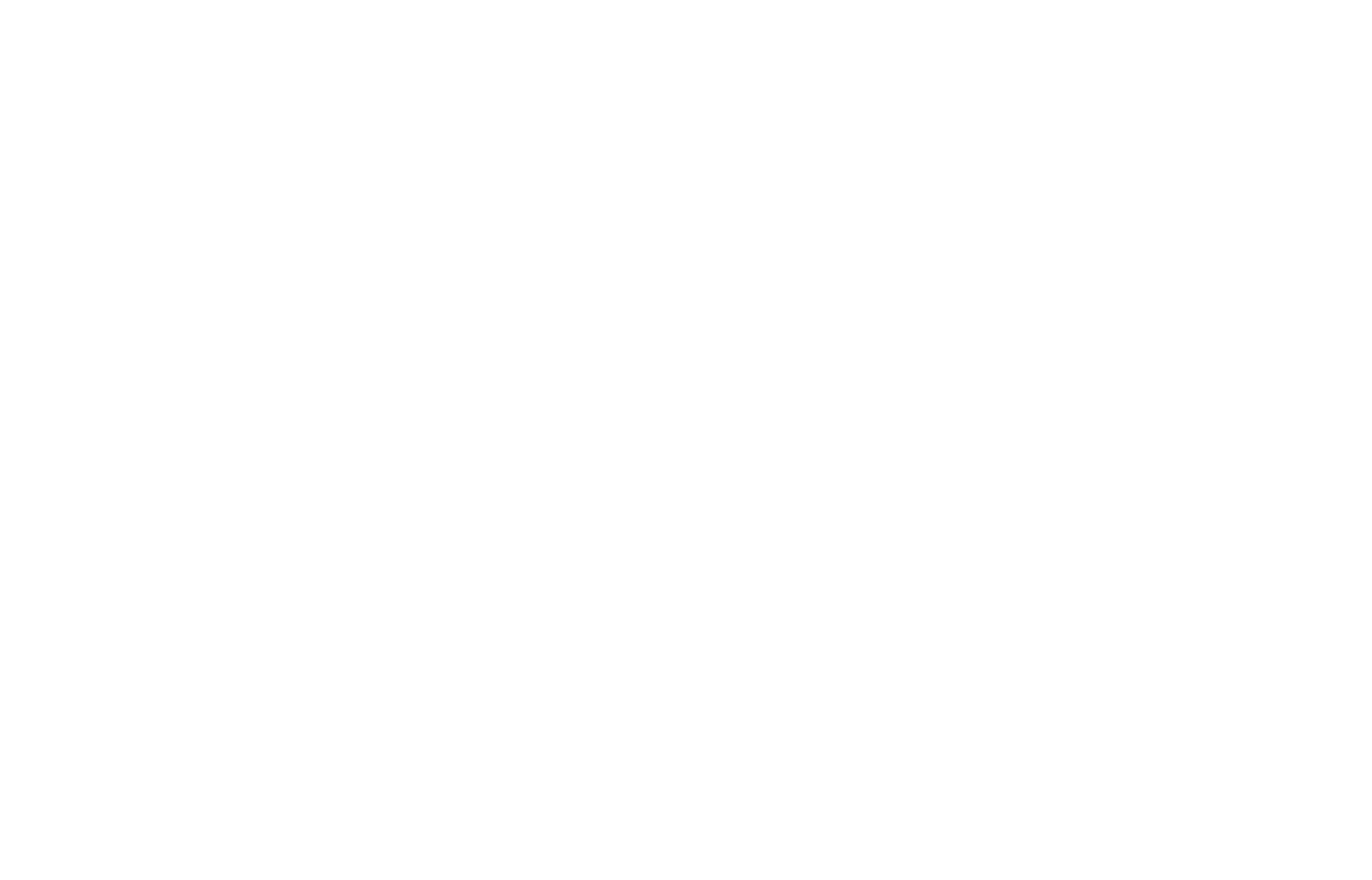 SwimBikeRun Boston