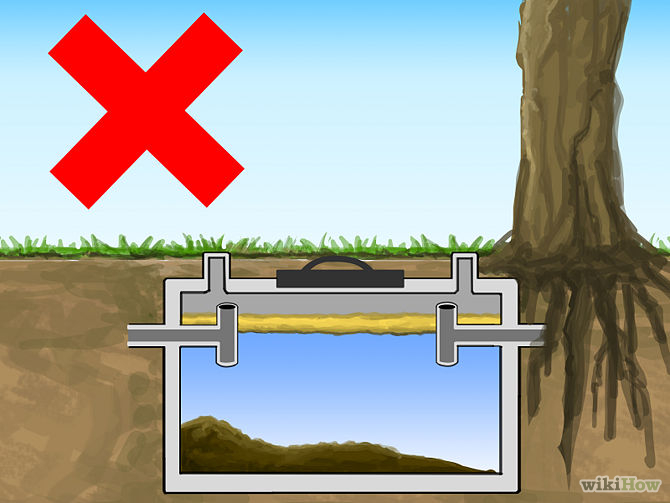 10 Important Tips For Maintaining Your Septic System Marlin