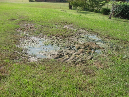 How Failing Septic Systems Can Be Hazardous To Your Health