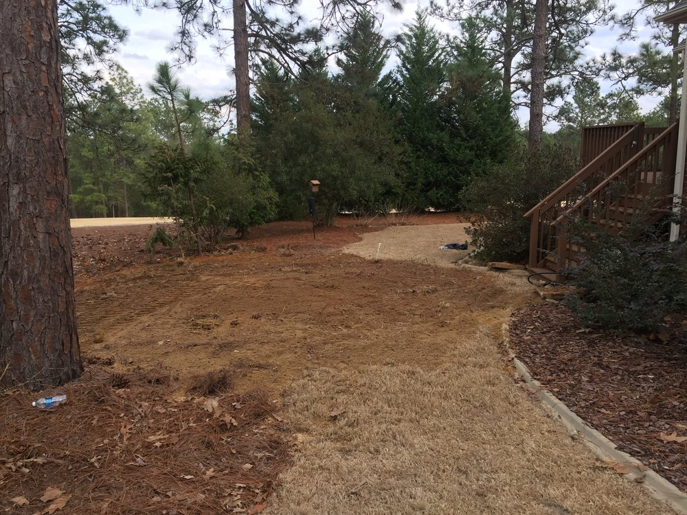 Post Septic Tank Replacement Landscaping