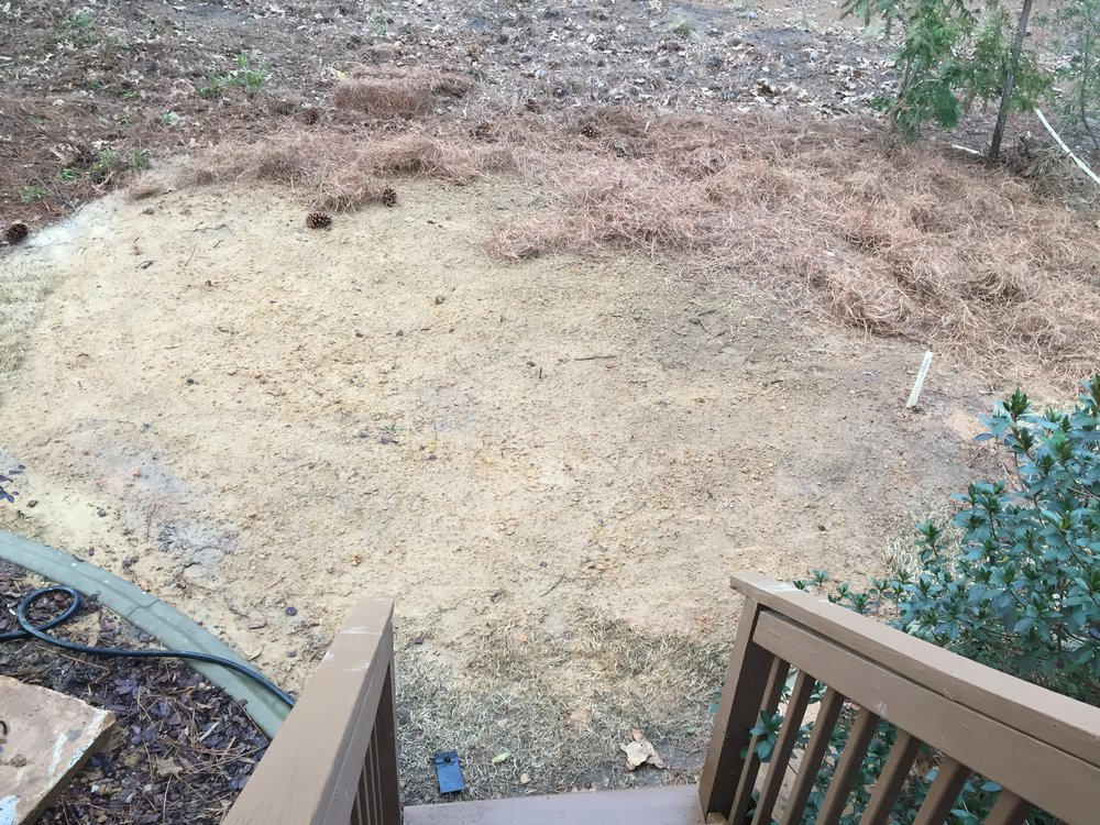 Post Septic Tank Replacement Landscaping 4