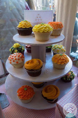 image of cupcakes at Magnolia Bakery in NYC, New York