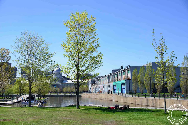 Image of Parc du bassin Bonsecours in Montreal, Canada