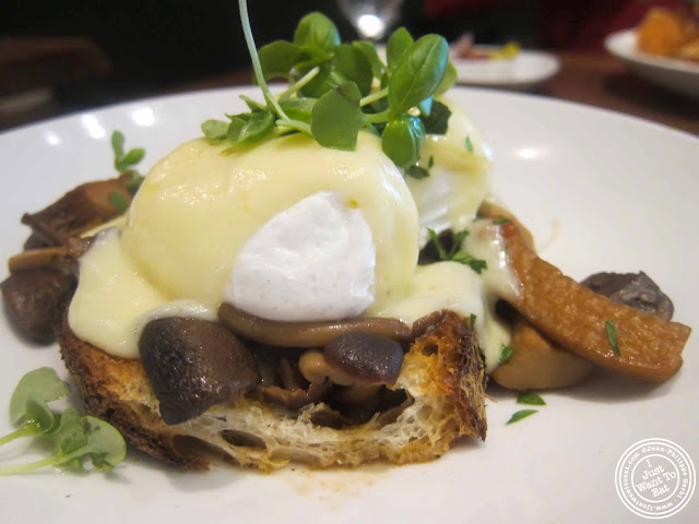 Image of braised mushrooms and poached eggs at Tom Colicchio's Craftbar in NYC, New York