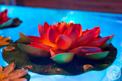 image of Lotus flower at Glow Thai restaurant and lounge in Bay Ridge Brooklyn, New York
