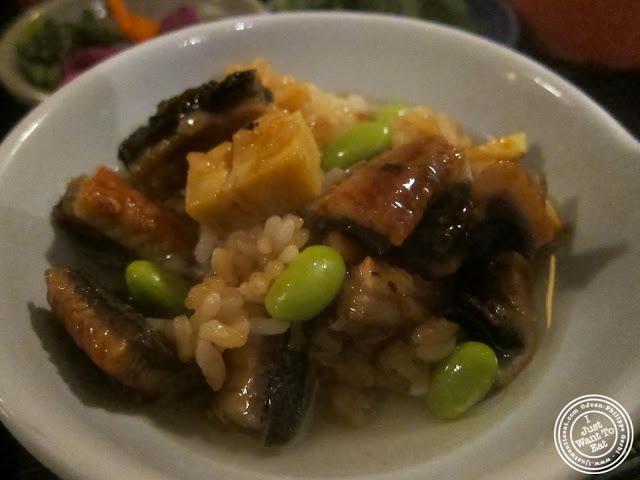 image of Hitsumabushi at East Japanese Restaurant in NYC, New York